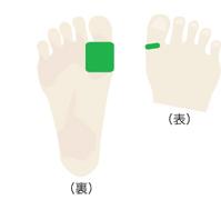 新陳代謝 ツボ 足2_180_2