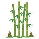 たけのこ 筍 竹の子の種類や違いには!