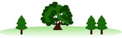 xmas-tree-400
