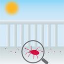 赤い小さい虫の駆除方法は!赤い小さい虫とは